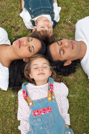 Merry family sleeping lying on the grassの写真素材 [FYI00482340]