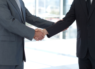 Handshake in agreementの写真素材 [FYI00482755]