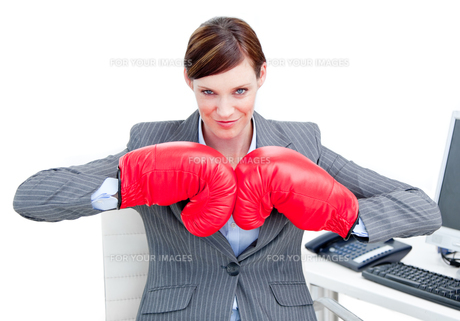 Portrait of a confident businesswoman wearing boxing glovesの写真素材 [FYI00482903]