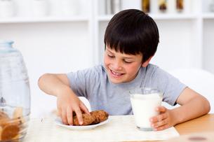 Little boy eating cookiesの写真素材 [FYI00482904]