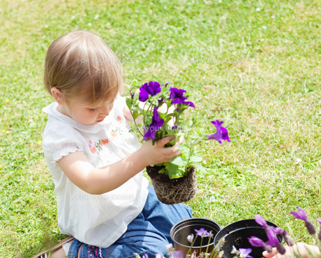 Child holding a flowerの写真素材 [FYI00482985]