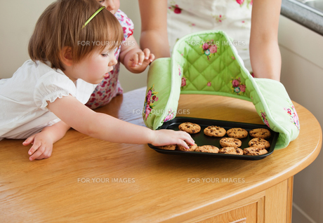 Sweet girl taking a cookie in kitchenの写真素材 [FYI00483016]