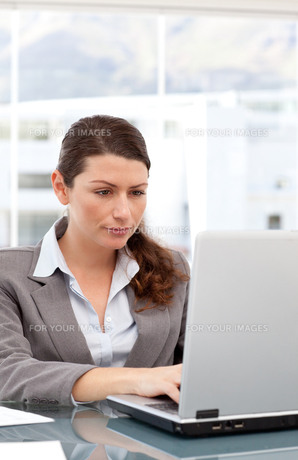 Pretty woman working on the computerの写真素材 [FYI00483343]