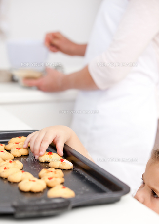 Cute little girl taking cookies while her mother is cookingの写真素材 [FYI00483360]