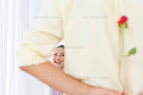 Rear view of a man hiding a rose for his girlfriendの写真素材 [FYI00483422]