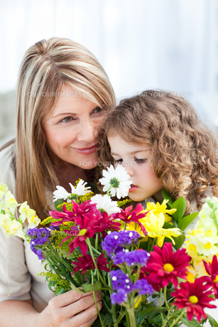 Little girl smelling flowers while her grandmother is smillingの写真素材 [FYI00483534]
