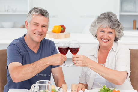Senior couple drinking some wine at homeの写真素材 [FYI00483682]