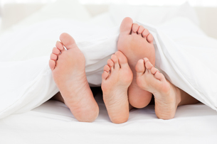 Two members of a family showing their feet while lying on a bedの写真素材 [FYI00483774]