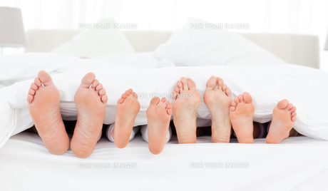 Whole family showing their feet while lying on a bedの写真素材 [FYI00483778]
