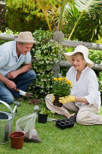 Mature couple working in the gardenの写真素材 [FYI00483871]