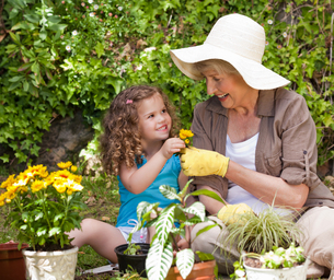 Happy Grandmother with her granddaughter working in the gardenの写真素材 [FYI00483905]