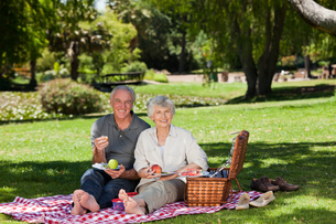 Retired couple  picnicking in the gardenの写真素材 [FYI00483934]