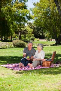 Elderly couple  picnicking in the gardenの写真素材 [FYI00483938]