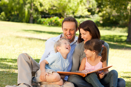 Family looking at their photo album in the parkの写真素材 [FYI00483940]