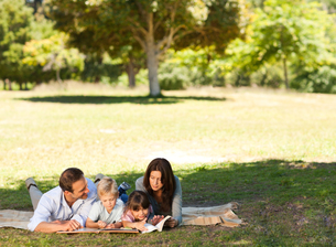 Family in the park togetherの写真素材 [FYI00483953]