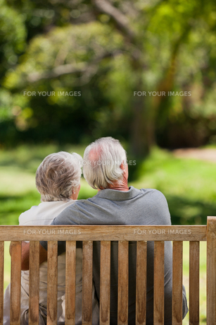Couple sitting on the bench  with their back to the cameraの写真素材 [FYI00483978]
