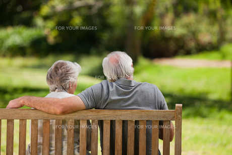 Couple sitting on the bench  with their back to the cameraの写真素材 [FYI00483980]
