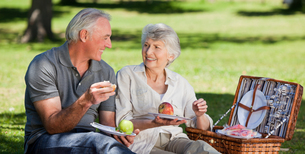 Retired couple  picnicking in the gardenの写真素材 [FYI00483981]