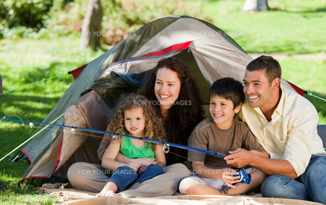 Joyful family fishingの写真素材 [FYI00483984]