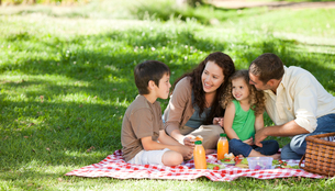 Family  picnicking togetherの写真素材 [FYI00483990]