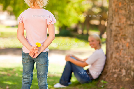 Daughter offering a flower to her motherの写真素材 [FYI00484170]