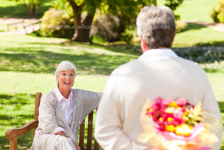 Retired man offering flowers to his wifeの写真素材 [FYI00484176]