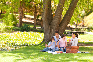 Cute family picnicking in the parkの写真素材 [FYI00484203]