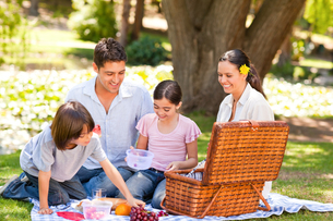 Lovely family picnicking in the parkの写真素材 [FYI00484206]