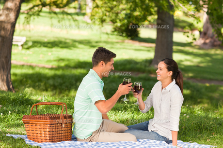 Young couple  picnicking in the parkの写真素材 [FYI00484213]