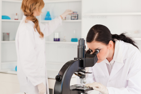 Darkhaired scientist using a microscope with her assistantの写真素材 [FYI00484231]