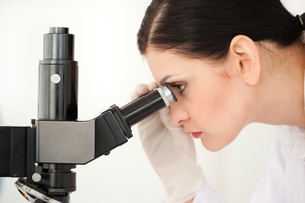 Scientist looking through a microscope in a labの写真素材 [FYI00484236]
