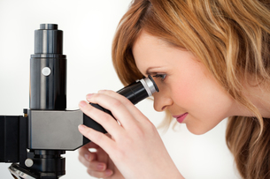 Blond scientist looking through a microscope in a labの写真素材 [FYI00484237]
