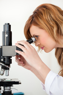Cute blondhaired scientist looking through a microscopeの素材 [FYI00484240]