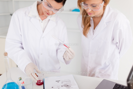 Two scientist women looking at a test tubeの写真素材 [FYI00484242]