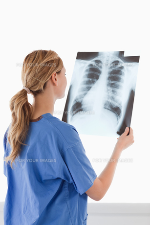 Cute female doctor looking at an Xrayの素材 [FYI00484288]
