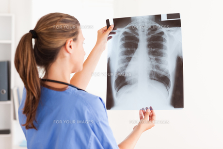 Gorgeous brunette doctor with stethoscope looking at a xrayの写真素材 [FYI00484487]