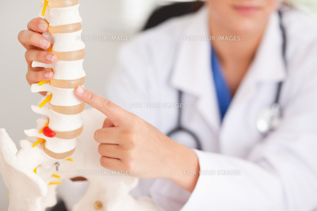 Doctor pointing at bone in spineの写真素材 [FYI00484601]