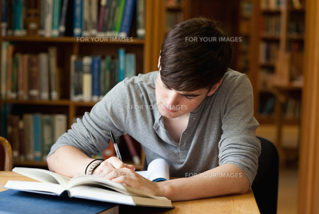 Focused male student workingの写真素材 [FYI00484683]