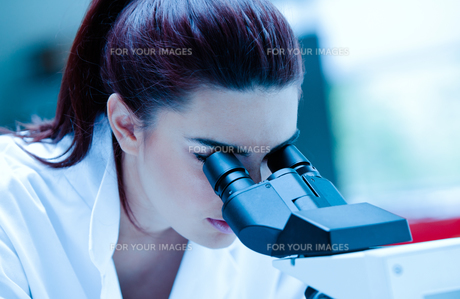Young scientist using a microscopeの素材 [FYI00484713]