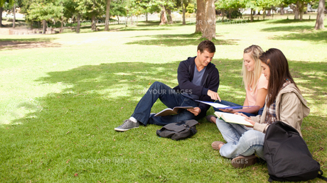 Tutoring in a sunny parkの写真素材 [FYI00484939]