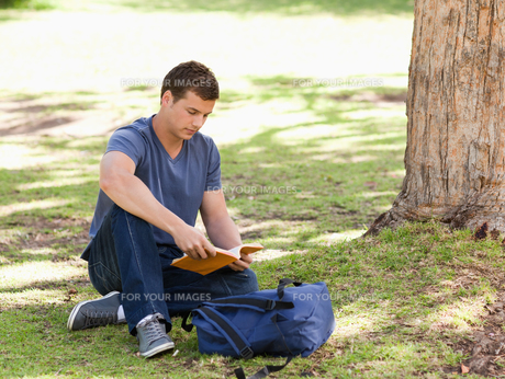 Student reading a textbookの写真素材 [FYI00484944]