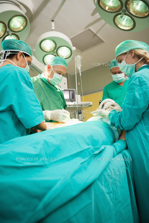 Medical team operating a patientの写真素材 [FYI00485215]