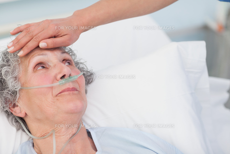 Nurse touching the forehead of a patientの写真素材 [FYI00485240]