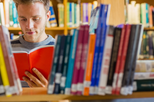 Male student reading book in the libraryの写真素材 [FYI00485481]