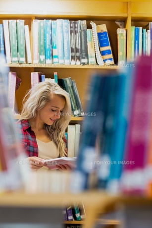 Student reading book amid bookshelves in the libraryの写真素材 [FYI00485483]