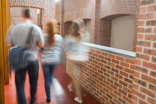 Students walking in the hall togetherの素材 [FYI00485858]
