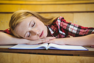 Pretty student sleeping on notebookの写真素材 [FYI00486104]