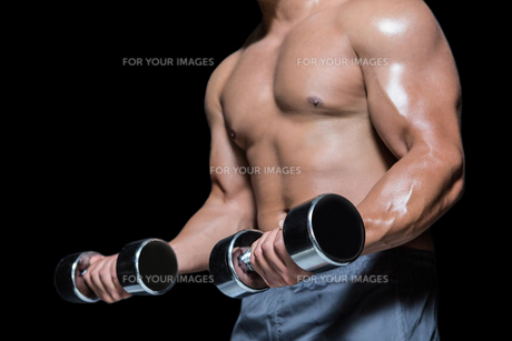 Mid section of a bodybuilder with dumbbellsの写真素材 [FYI00486107]
