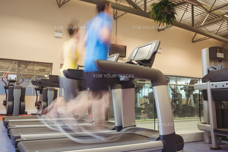 Fit people using the treadmillの写真素材 [FYI00486162]