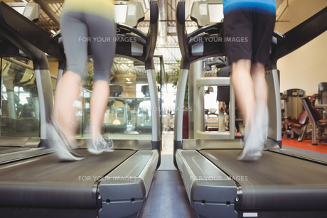 Fit people using the treadmillの写真素材 [FYI00486163]